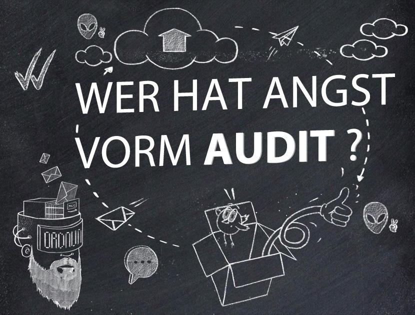 Wer-Hat-Angst-Vorm-Audit_thumb